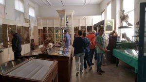 Natuurhistorisch en Volkenkundig Museum